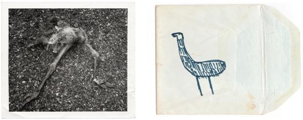 LS 19 imaginary emu copy