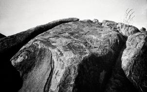 henry's possum-rocks