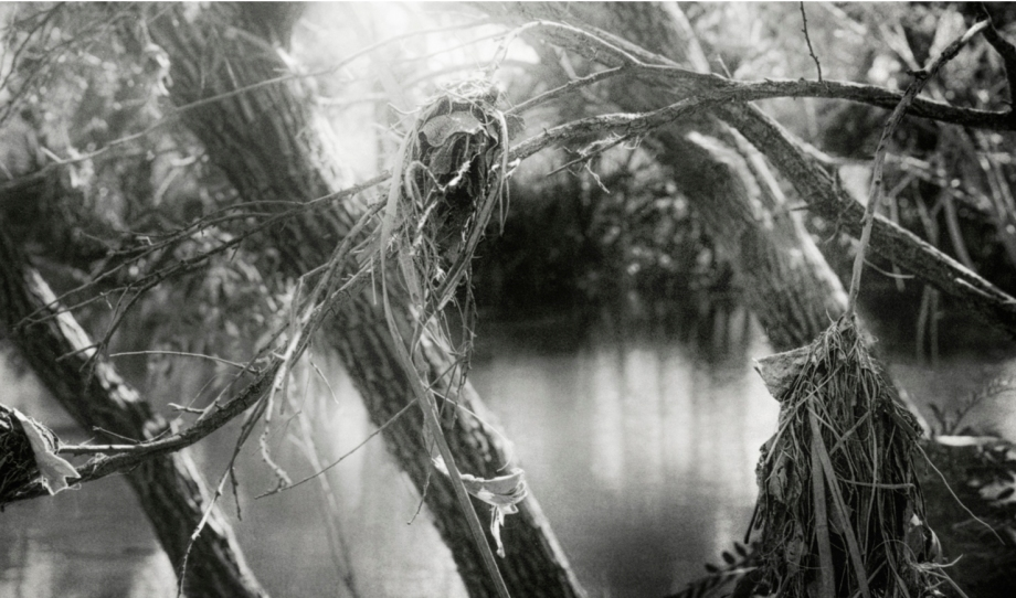 wati creek2